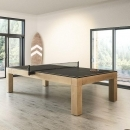 DREAM PING PONG
